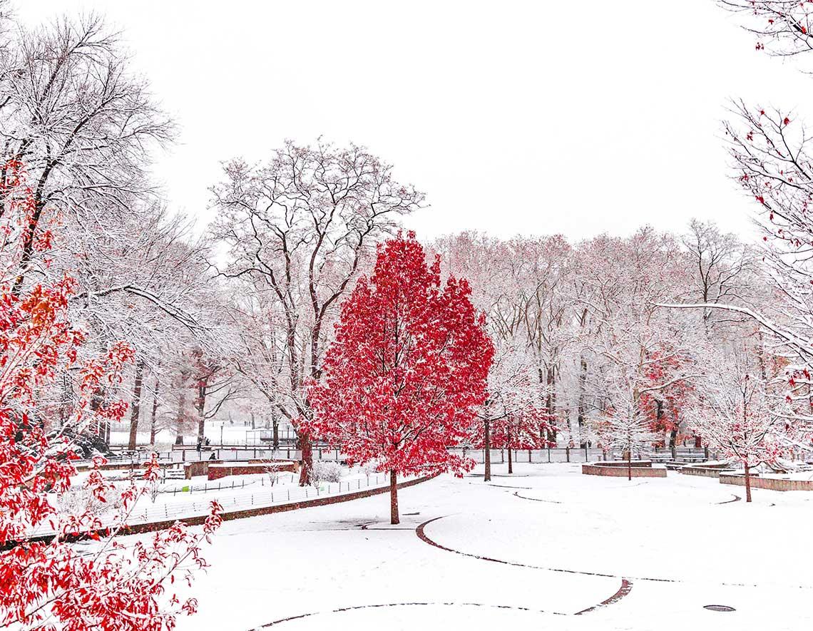 Décembre, premier mois d'hiver du cycle des 3 mois : Réflexologie