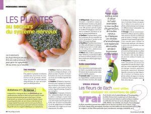 Les plantes au secours du système nerveux